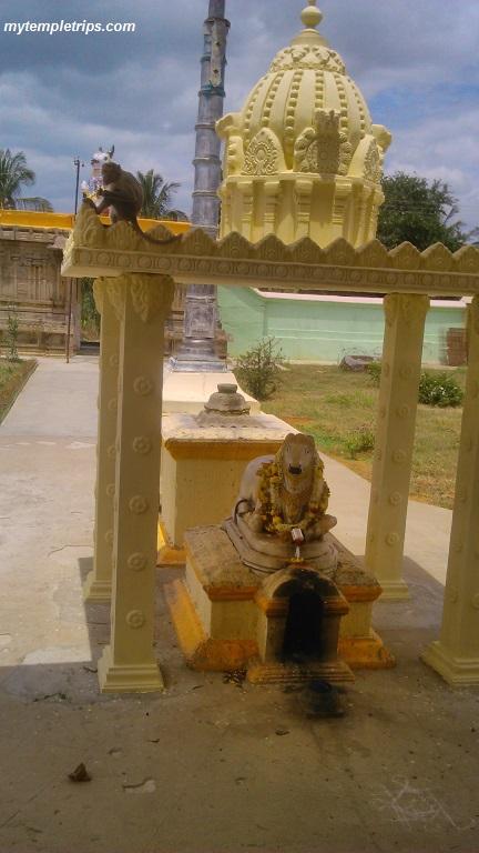 somesh_shivasamu (6)